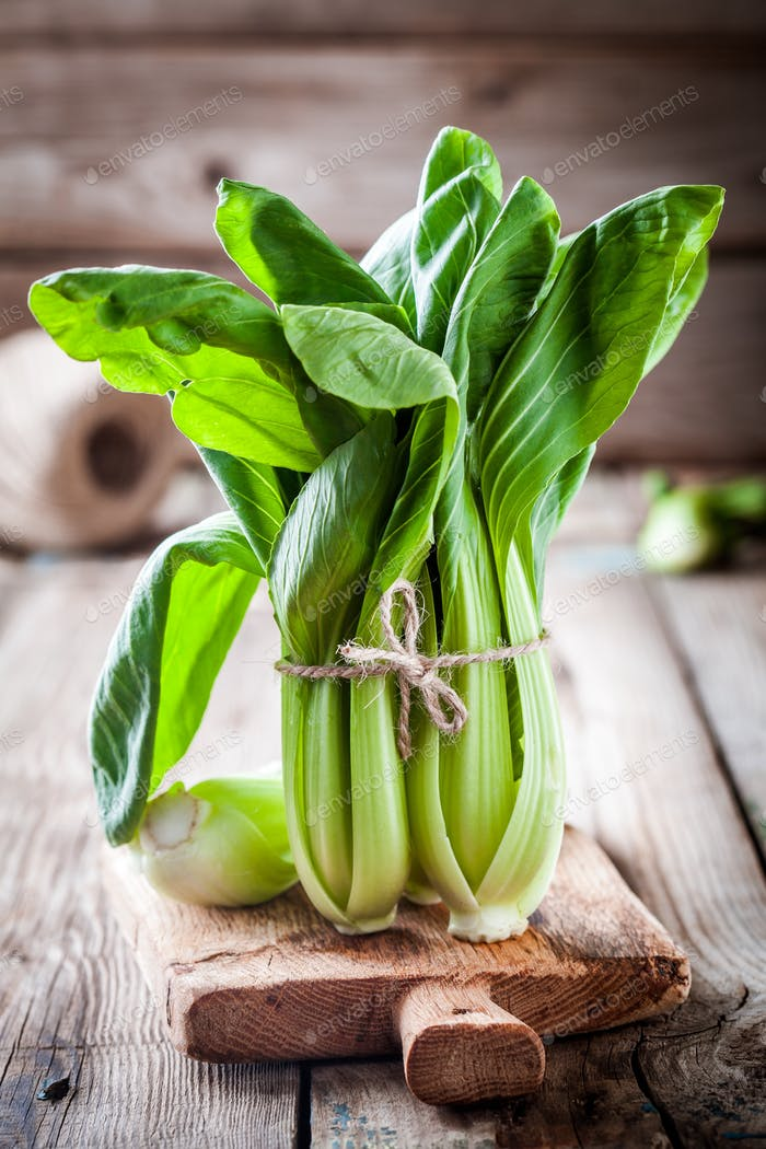 bok choy cabbage