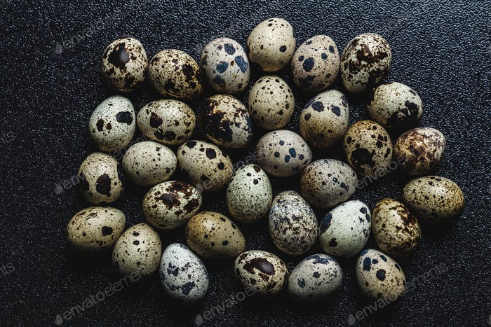 Bunch of raw spotted quail eggs