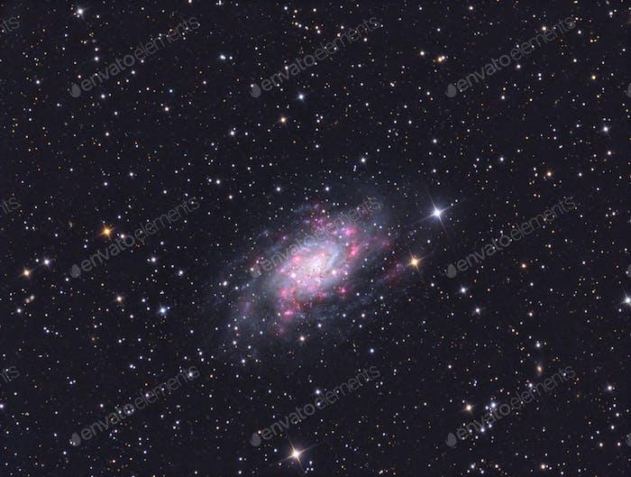 Galaxy NGC 2403