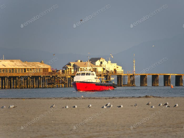 Boat on Water and Seagulls on Land
