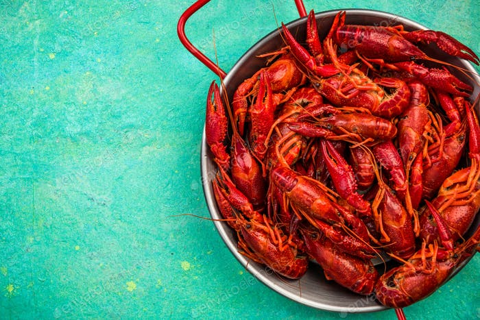 Red Crayfish in Saucepan on Vibrant Background, Top View, Copy S