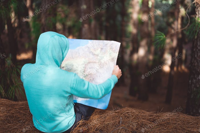 Rückansicht des Reisenden in blauem Hoodie mit Karte während der Ruhe im Kiefernwald