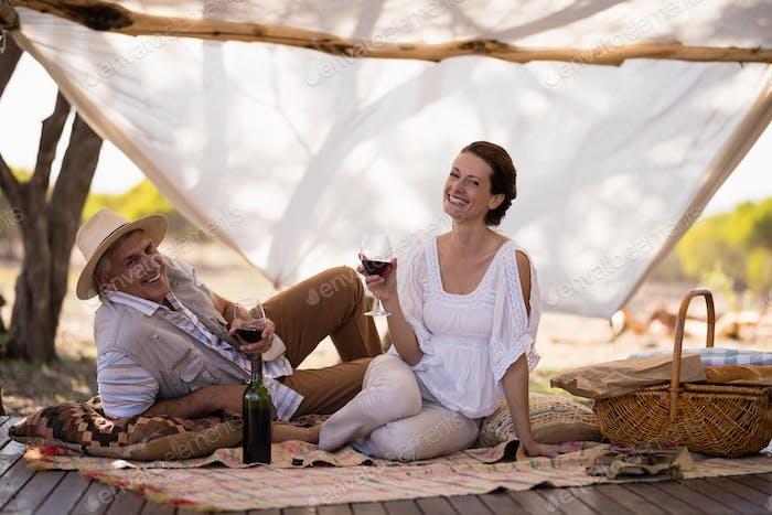 Portrait of happy couple having wine in cottage