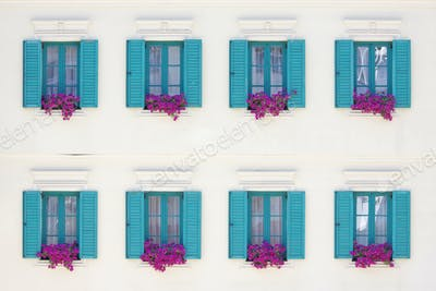 Windows and Window Boxes