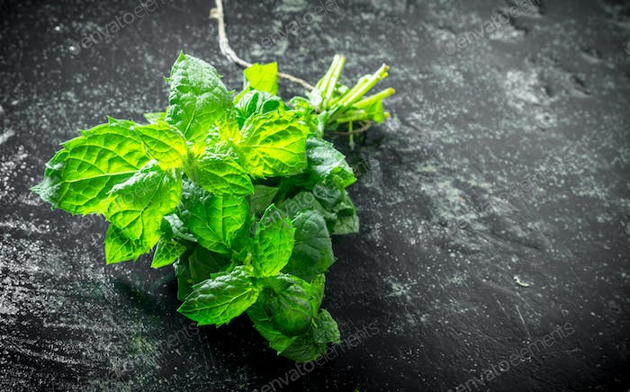 Fresh mint from the home garden.