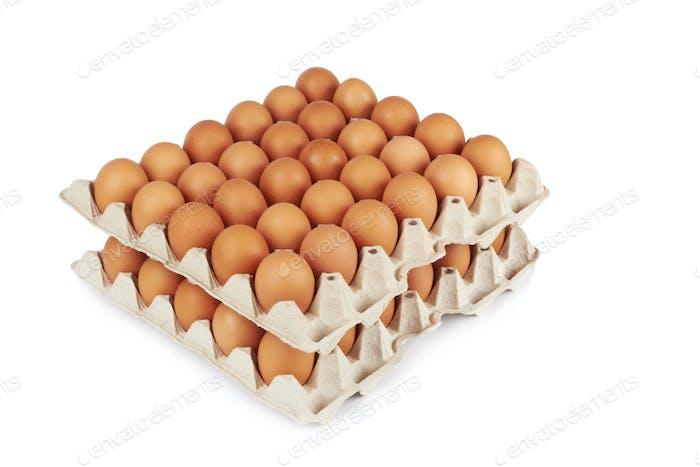 Eier in Pater Tablett