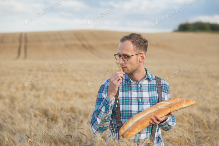 Young farmer sniff rye spikelet