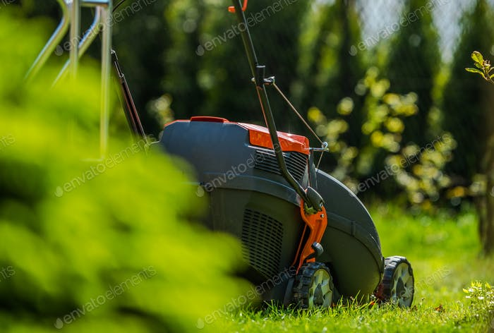 Grass Mowing in Garden