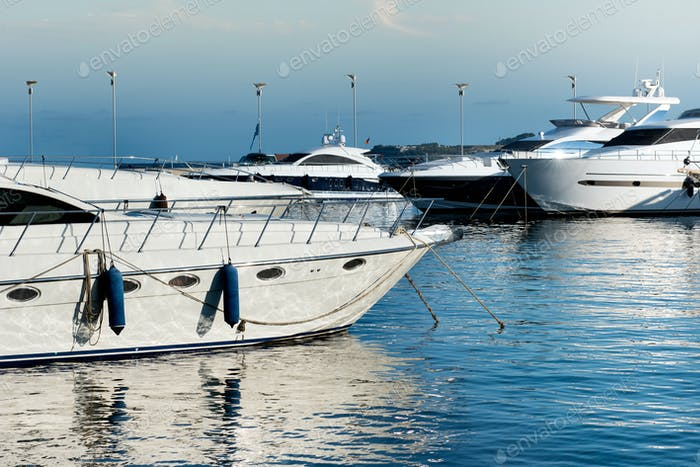 Luxury motorboats or yachts moored in a marina