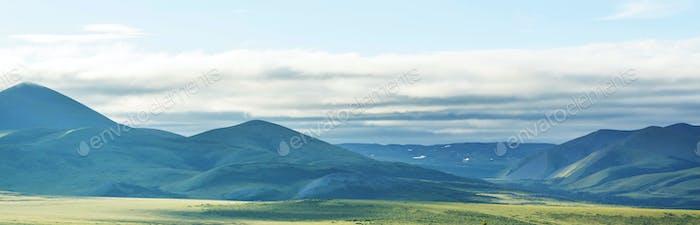 Polar tundra