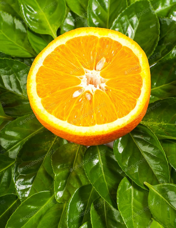 Half the ripe orange on the background of the leaves of the Bere