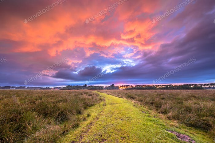 Path through Wild natural landscape under amazing sky