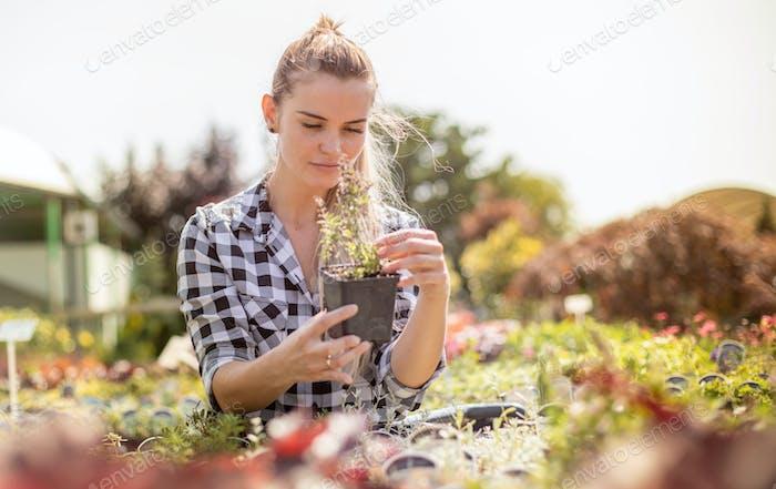 Lächelnde Kundenfrau im Gartencenter auf der Suche nach Pflanzen