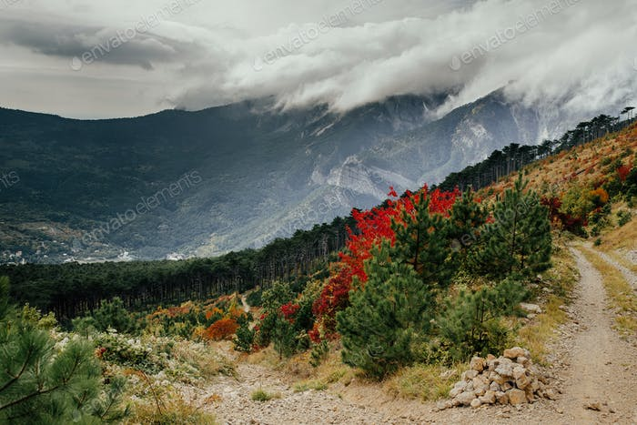 Crimea autumn mountain landscape