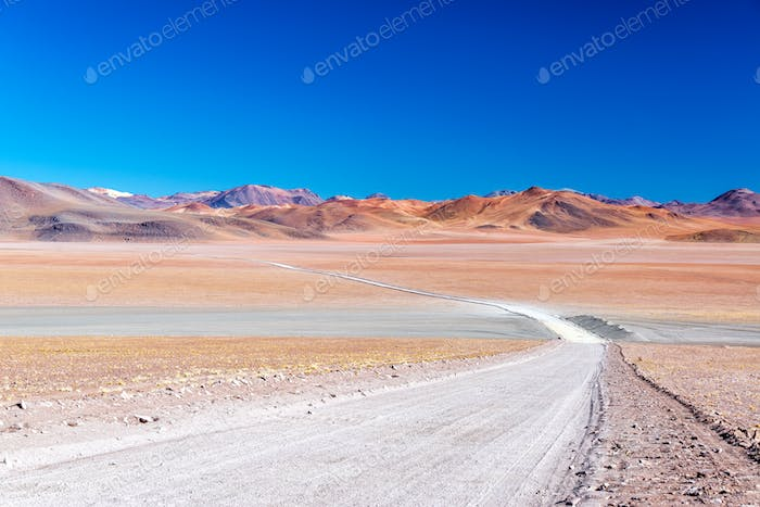 Barren and Colorful Landscape
