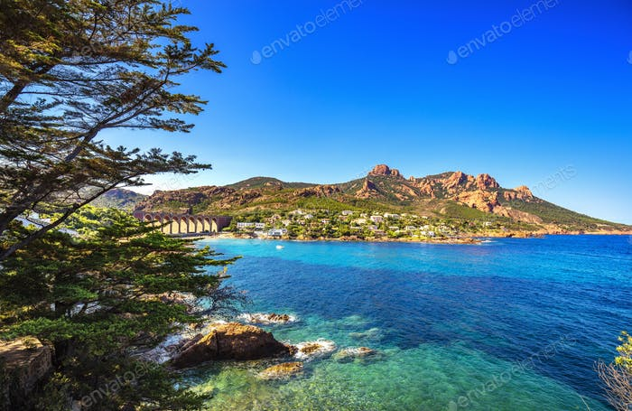 Esterel rocks beach coast, tree and sea. Cannes Saint Raphael Co