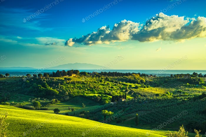 Maremma countryside, sunset landscape. Elba island on horizon. T