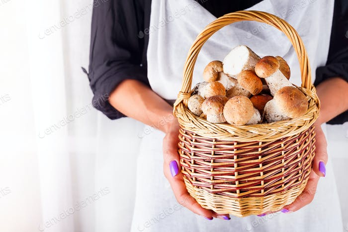 Girls hands holding a basket with forest organic mushrooms around a white background with copy space