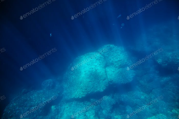 underwater seabed with sunlight
