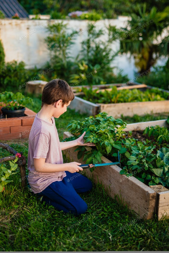 Boy working in a garden