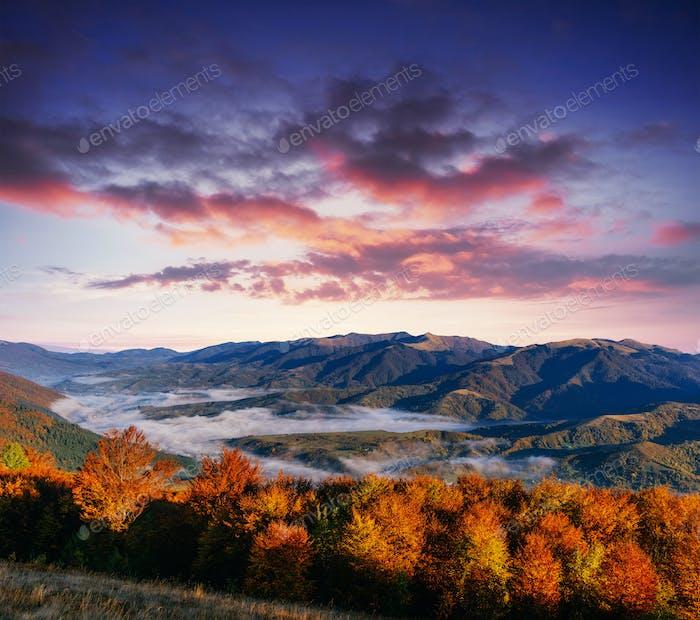 View of misty fog mountains in autumn, Carpathians. Ukraine. Eur