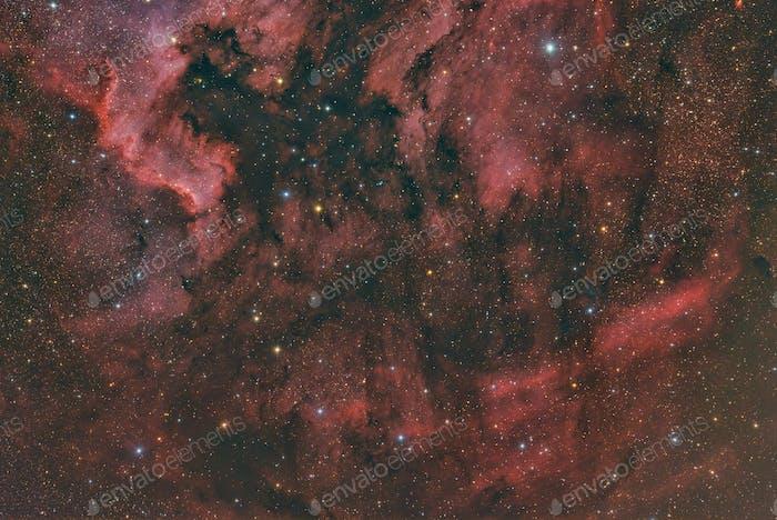 IC 5068 emission nebula in constellation Cygnus