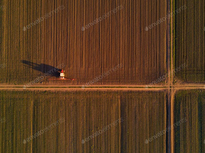 Agricultural tractor with crop sprayer in cultivated corn crop f