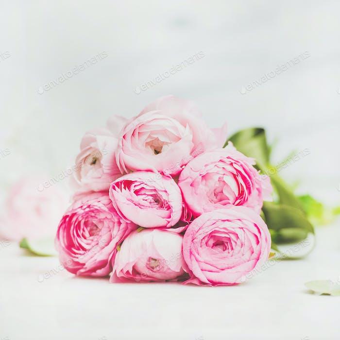 Light pink spring ranunkulus flowers on marble background, square crop