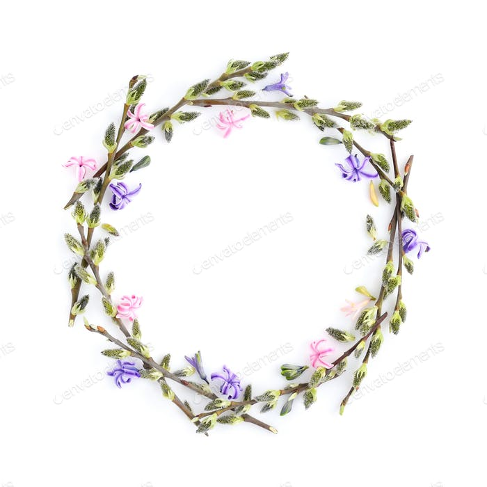 Pussy-willow branches with flowers hyacinth circle frame. Decora
