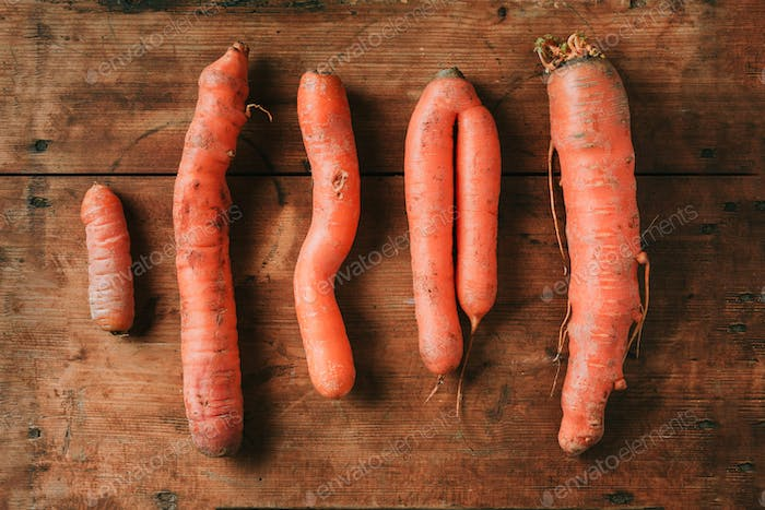 Ugly misshapen carrots on wooden background. Concept of zero waste production. Top view. Copy space