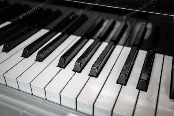 Piano Keyboard. Piano keys viewed from above