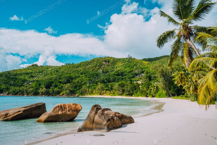 White sand beach, coconut palms and blue lagoon of tropical island, Anse Takamaka beach, Seychelles