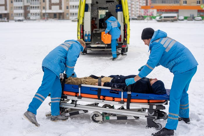 Two paramedics in blue workwear fixing unconscious man with belts on stretcher
