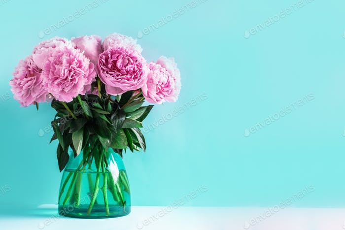 Pink peony flower on blue background. Copy space. Floral composition. Wedding, birthday, anniversary