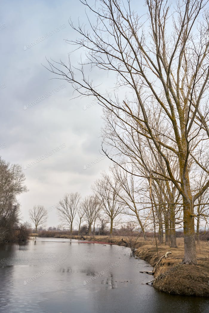 Part of the delta of river Evros, Greece