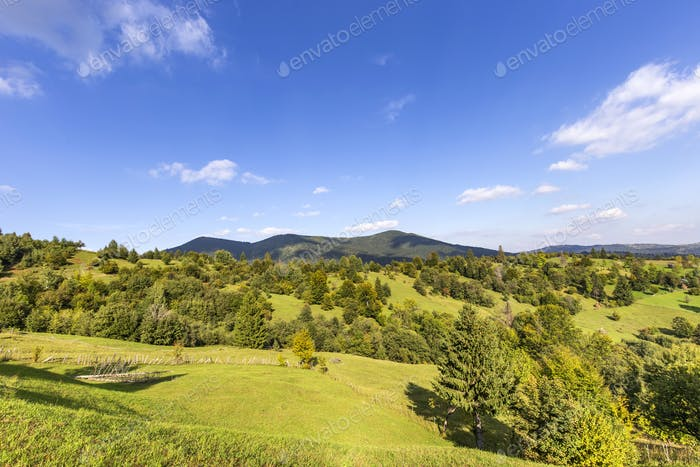 Hills and trees in Romania
