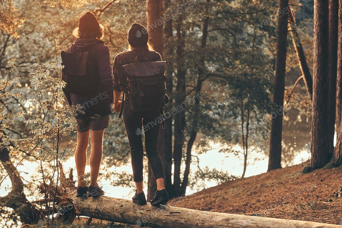 Romantic couple is standing on the log in green bright forest and watching sunset