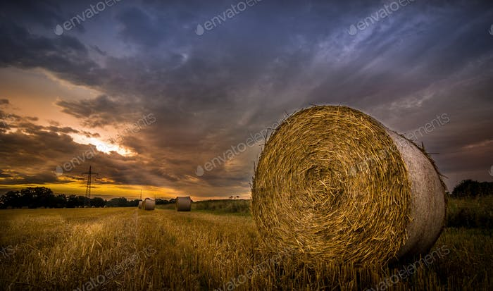 Sunrise over Fields of Hay
