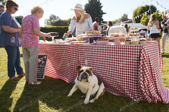 French Bulldog Sitzen By Cake Stall At Busy Summer Garden Fete