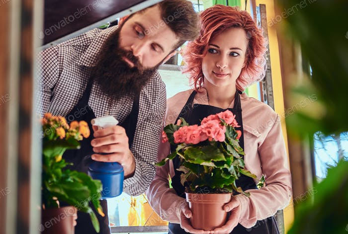 Two florists, beautiful redhead female and bearded male wearing uniforms working in flower shop.