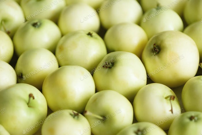 Top view of green apple. Background, concept, copy space, macro
