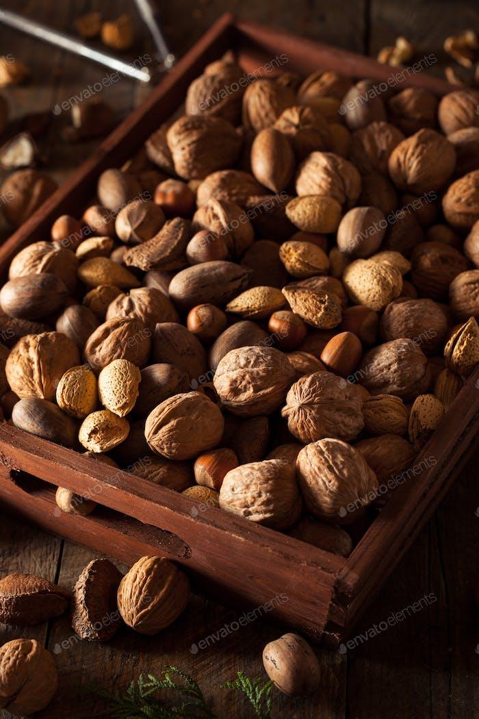 Verschiedene gemischte Bio-Nüsse