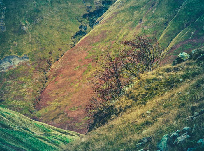 Rugged Scottish Hillside