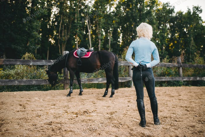 Female rider trains her horse, horseback riding