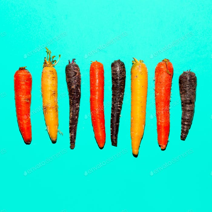 Set carrots. Minimal art design