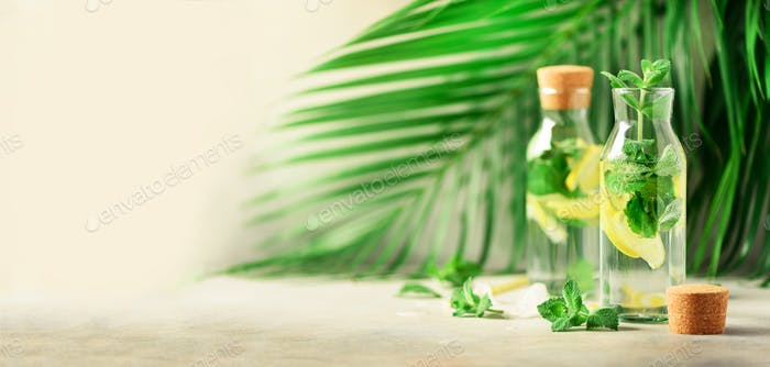 Citrus lemonade - mint, lemon and tropical palm leaves on grey background. Detox drink. Banner with