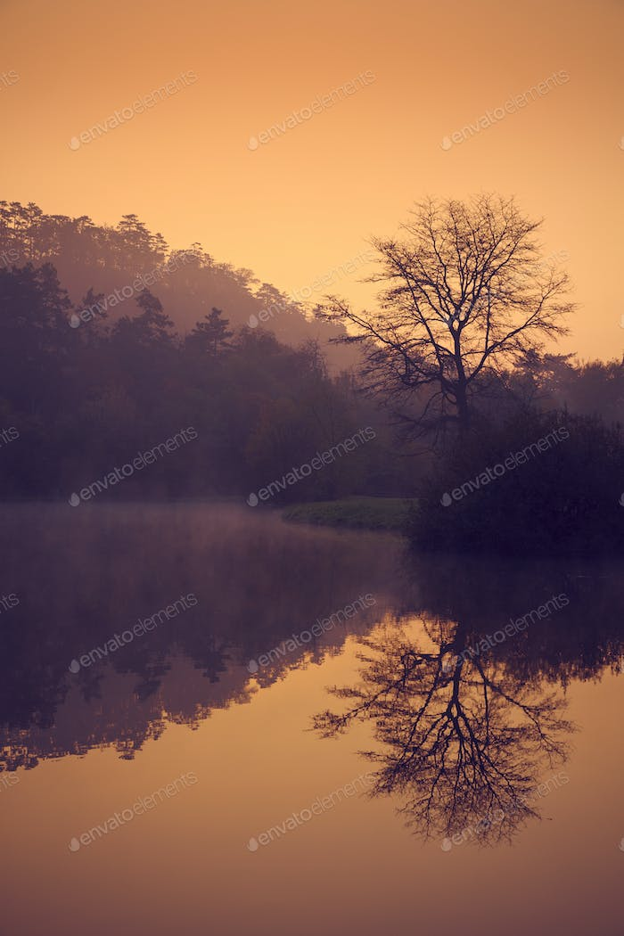 Misty morning autumn lake