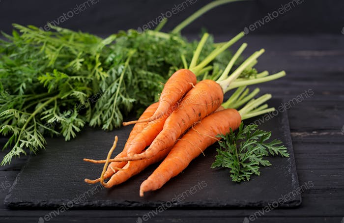 Bunch of fresh carrots with green leaves on  dark  wooden background.