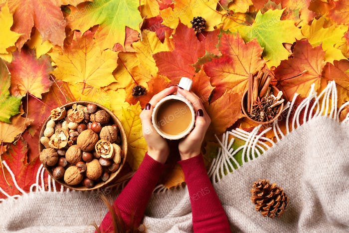 Autumn flat lay. Female hands with cup of coffee, beige plaid, wooden bowl with nuts, cones