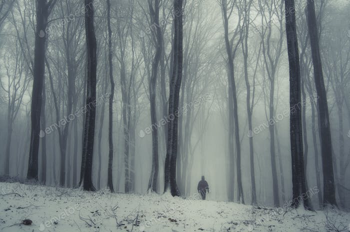 Man walking in mysterious winter forest with snow